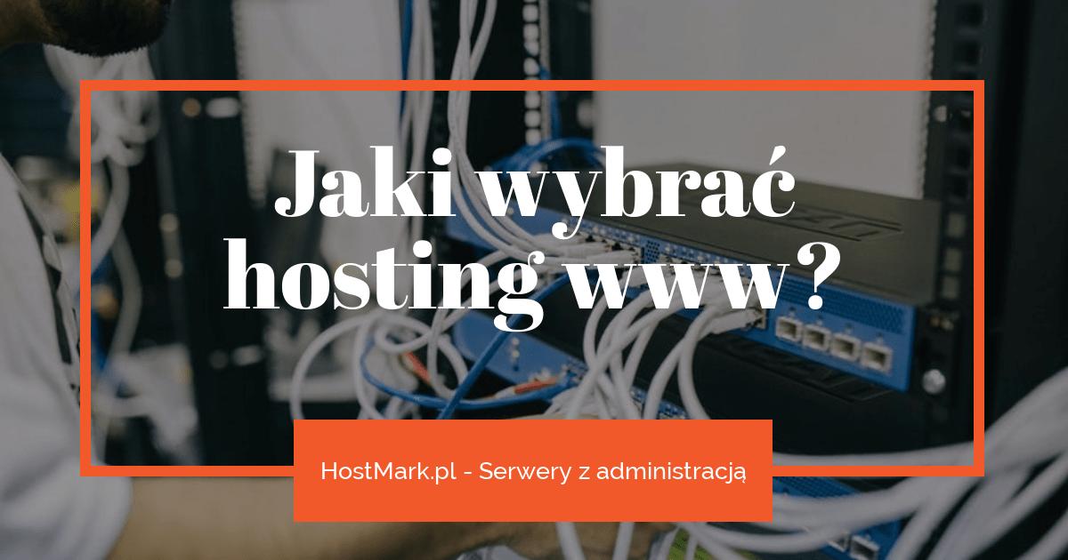 Jaki wybrać hosting www